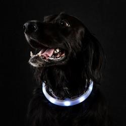 Podświetlana smycz dla psa