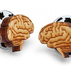 Kolczyki z anatomicznym obrazem mózgu