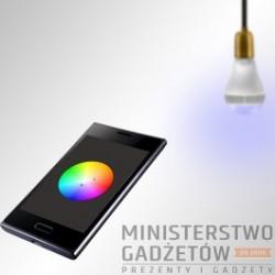arówka z Głonikiem Bluetooth
