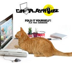 Laptop dedykowany kotom