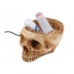 Koncentracja w czaszce