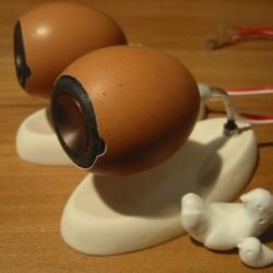 Jajo-głośniki