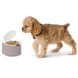 Automatycznie otwierająca się miska dla psa