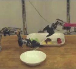 Robot karmiący na życzenie