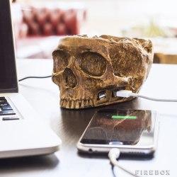 Stacja USB w kształcie czaszki