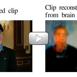 Obrazy, które widzi nasz mózg
